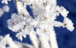 images/Fotos/Natur/Winter/thumbs//Winterbild_farbspektrum-schnee.jpg