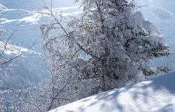 images/Fotos/Natur/Winter/thumbs//Winterlandschaft-DSC_5076.jpg