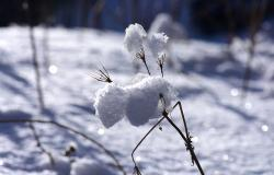 images/Fotos/Natur/Winter/thumbs//Winterlandschaft-DSC_7690.jpg